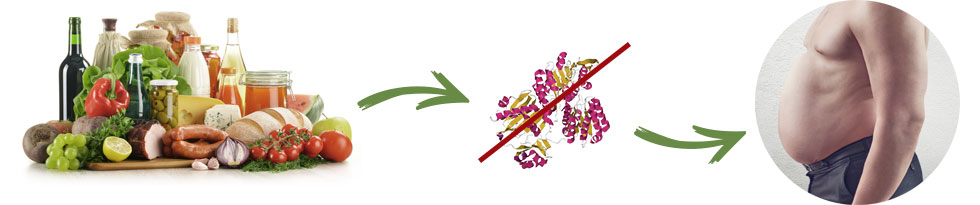 Garcinia Slim - funziona - composizione - ingredienti - come si usa