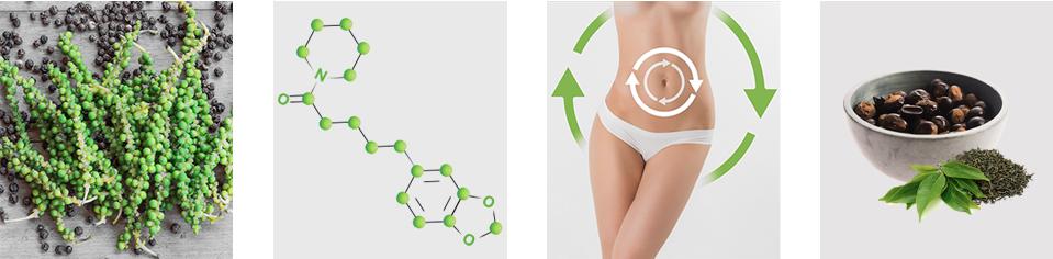 Piperine Slim - funziona - composizione - ingredienti - come si usa