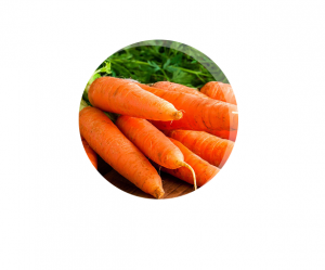 BenaVid - funziona - composizione - ingredienti - come si usa