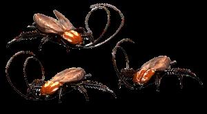 Pest Away Mini - controindicazioni - effetti collaterali