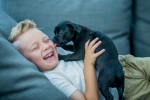 Pet Smile - come si usa - funziona - composizione - ingredienti