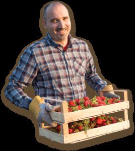 Home Berry Box - effetti collaterali - controindicazioni