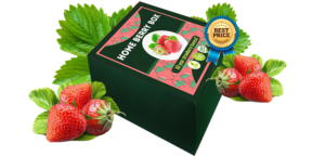 Home Berry Box - opinioni - commenti - recensioni - forum