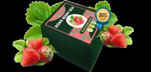Home Berry Box - originale - recensioni - funziona - prezzo - forum - dove si compra?