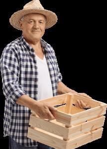 Home Berry Box - prezzo - farmacia - dove si compra? - amazon
