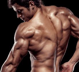 X-Muscle - prezzo - dove si compra - in farmacia - amazon