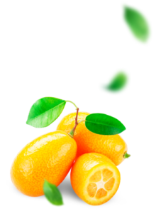 Fortunella - ingredienti - come si usa - funziona - composizione